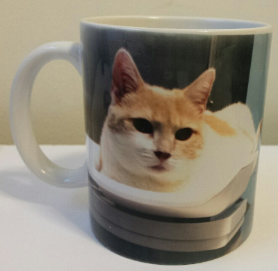 Mug with Pet Photo